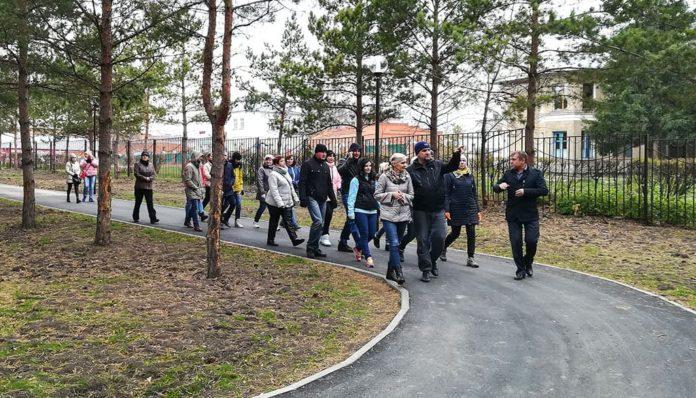 Высадка сосновой аллеи в центральном парке Белово