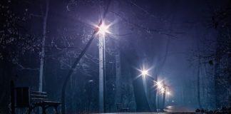 Ночной парк, дождь