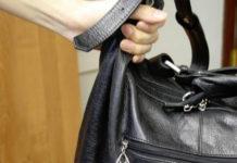 Украла сумку, воровка