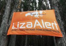 Лиза Алерт флаг