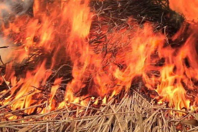 Пожар, огонь, сено