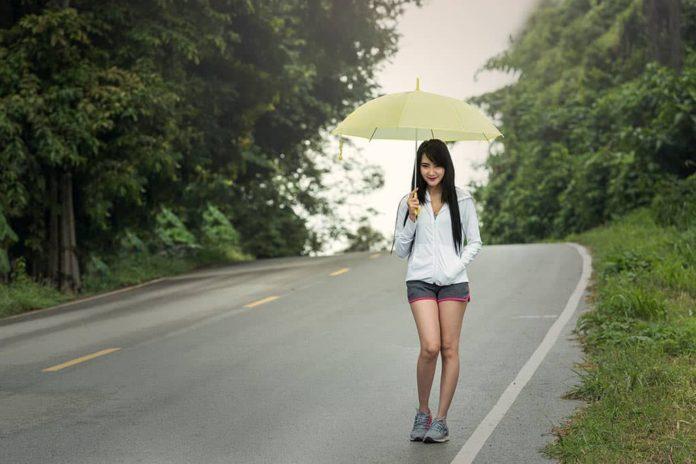 Девушка, дождь, зонт, дорога, лес
