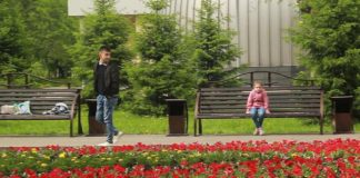 Социальный эксперимент Лиза-Алерт в Новокузнецке