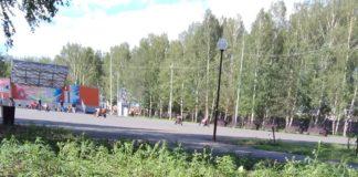 Запрещенное растение произрастает в Центральном парке Белова