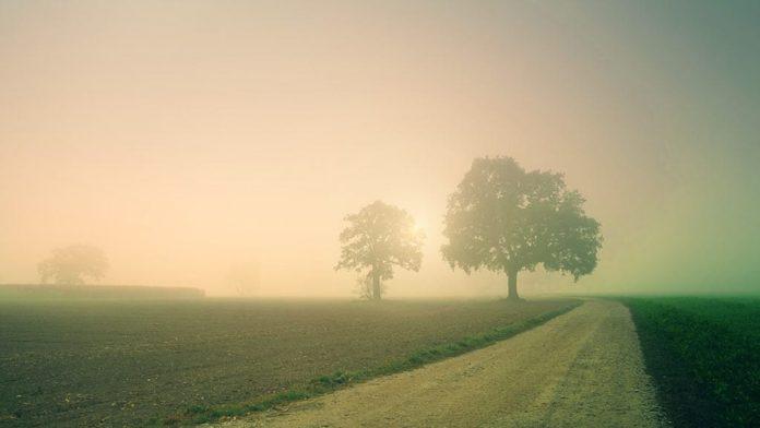 Дымка, туман, дорога, рассвет