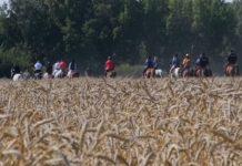 В Кузбассе стартовал первый конный ход