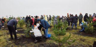 Акция «Живи лес» вБелово, 14сентября 2019г