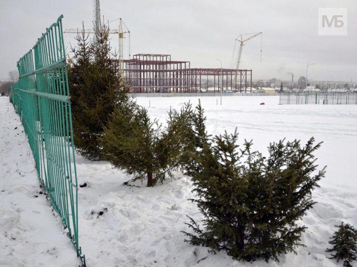 В Белове украли ёлки со стадиона Металлург