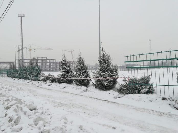 Со стадиона «Металлург» в Белово украли еще одну елку