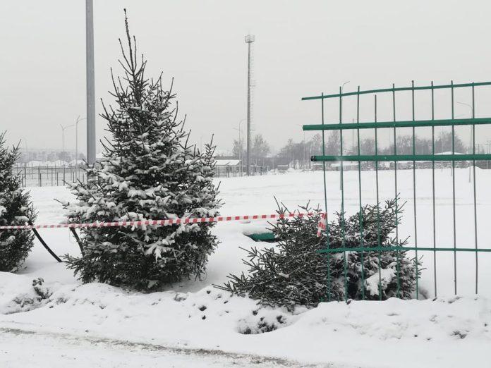 Состадиона «Металлург» вБелово украли еще одну елку