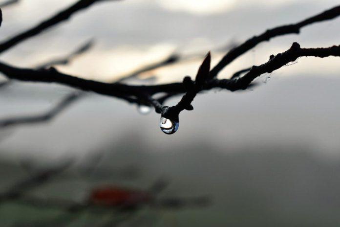 оттепель, погода
