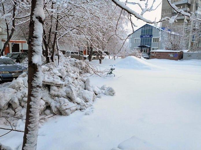 Варварская уборка снега в Белово, трактор ломает деревья