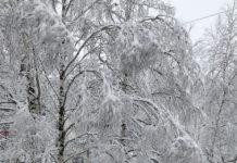 Зима, зимняя сказка, снег