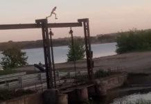 В Белове полицейские привлекли к ответственности родителей, чьи дети устроили экстремальные прыжки в воду