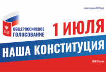 Наша конституция, общероссийское голосование 1 июля