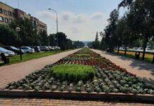 Белово, улица Юбилейная