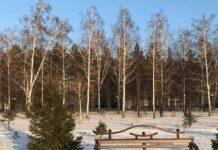 Парк «Юбилейный», Бачатский