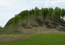 АО «УК «Кузбассразрезуголь» поддержала организацию Регионального памятника природы «Артышта» в Беловском муниципальном районе