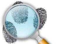 Детектив, следствие, криминал